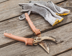 Garden pruner and gardening gloves