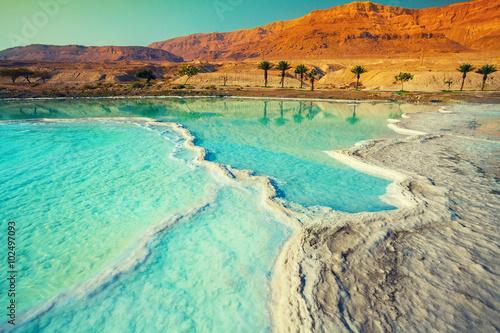 Fototapete Dead sea salt shore