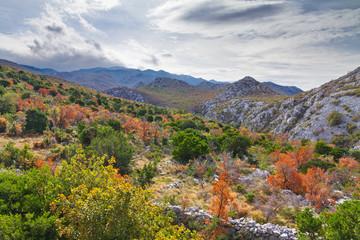 Autumn in the mountains of Velebit national park in Croatia