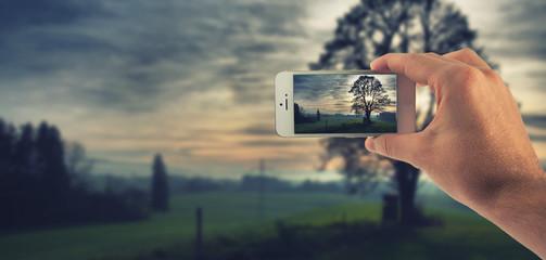 Männliche Hand haltet ein weißes Smartphone und fotografiert damit eine herbstliche Stimmung