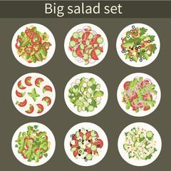 Big vector set. Various salads in plates