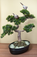 A small bonsai tree in black ceramic pot on wooden table, on yellow background. Bonsai tree with small swallows on branches and pearly white rocks around his stem