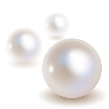 3 Pearls vector bokeh with shadow on a white background.