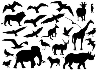 Set of animals silhouettes on white background. Vector illustration