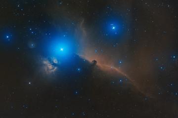 horse-head nebula