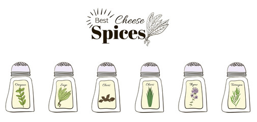 Best seasoning for cheese. A collection of stand-alone web design elements.