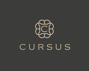 Abstract elegant monogram flower logo icon vector design. Universal creative premium letter symbol. Graceful vector sign. Luxury jewelry frame logotype