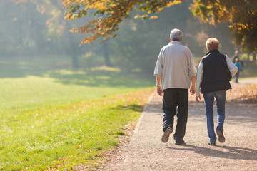 Senior citizen couple taking a walk in a park during autumn morning. Wall mural