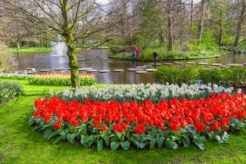 Fototapete - Spring park Keukenhof. Lisse, Netherlands.