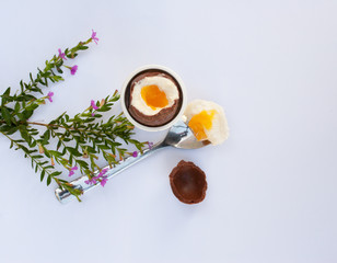 Spring Easter egg next to spoon with yolk and chocolate shell on the white background