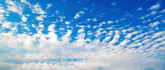Clouds in the blue sky. Sky background with white cumulus clouds on a sunny day. Panoramic shot.