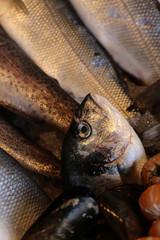 Fresh sea fish for sale