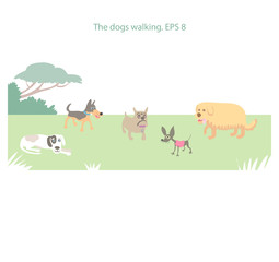 The dogs walking in the park