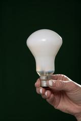 Woman's hand holding an household lightbulb