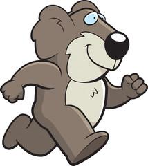 Koala Running