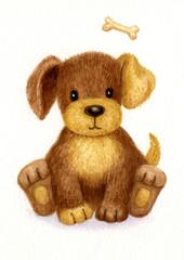 Cute puppy, watercolor.
