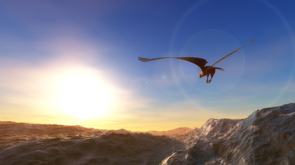 eagle flying over the sea at low altitude