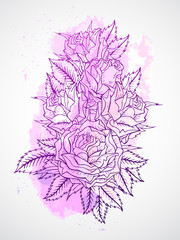Vector set of roses and leaves. Purple contour.