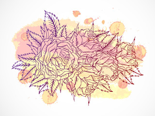 Vector set of roses and leaves. Maroon contour.