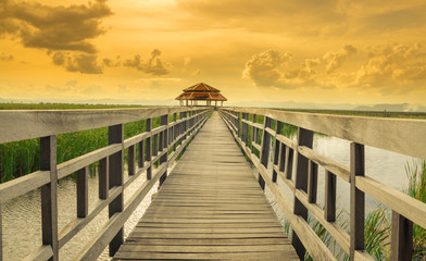 Wooden bridge in synset time at Sam Roi Yot National Park,Thailand
