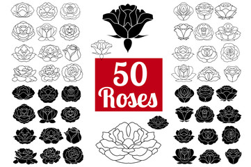 Hand drawn flower black silhouette and flat icon set, rose colle