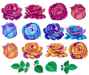 Vector illustration with blue,red, yellow and green leaves roses