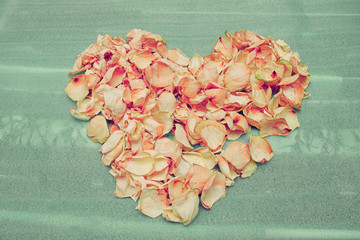Heart of dried rose petals on the green foam lining.