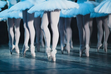 ballet swan lake. ballet statement. ballerinas in the movement.