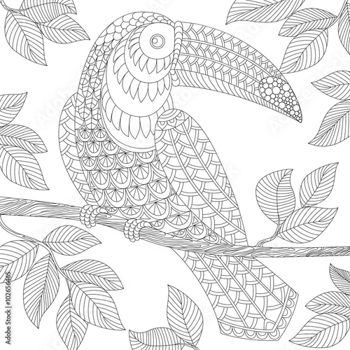 Volwassen Kleurplaat Lente Quot Toucan Adult Antistress Coloring Page Black And White
