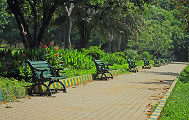 Row of sunlit park benches along a paved pathway
