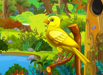 Cartoon forest and a bird on the branch - scene for different fairy tales - illustration for the children