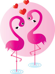 two flamingo birds in love