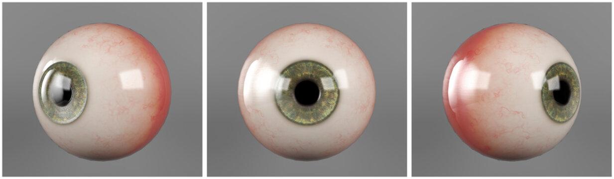 Realistic human eyeballs green iris pupil in three different sides