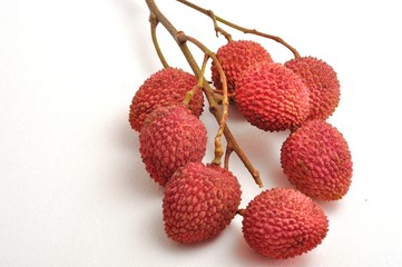 Branch of lychees