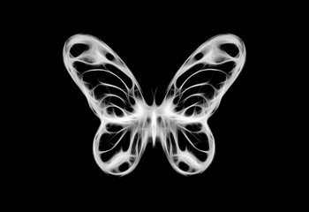 illustration of a butterfly, mixed medium, black and white color.