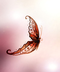 illustration of a butterfly, mixed medium, abstract color background.