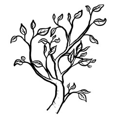 tree branch / cartoon vector and illustration, black and white, hand drawn, sketch style, isolated on white background.