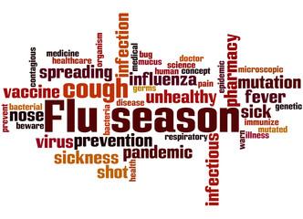 Flu season, word cloud concept 3