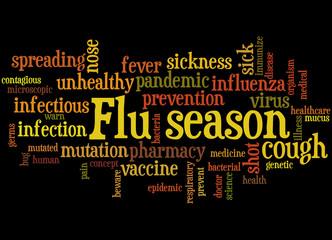 Flu season, word cloud concept 6
