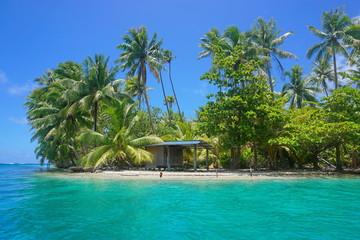 Hut on islet shore Huahine French Polynesia