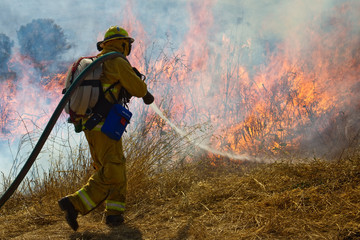Wildland Firefighter fighting grass fire