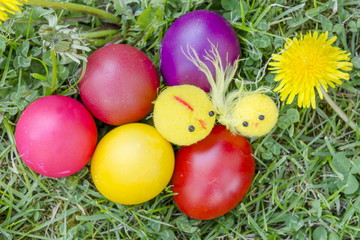 Homemade colorful Easter eggs on the grass