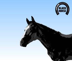 Black stallion. Black stallion on blue sky background.
