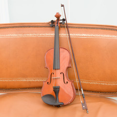 Violin on the leather