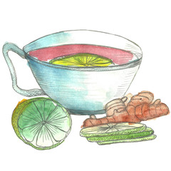 hand drawn watercolor illustration of cup of tea