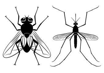 Vector silhouettes of a fly and mosquito