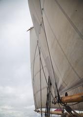 Segelschiff in der Bay of Islands