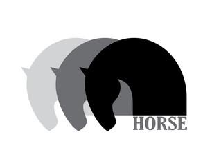 Pferde welt