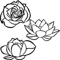 Flower outline set