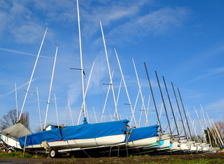 Large group of sailing boats stored on trailers